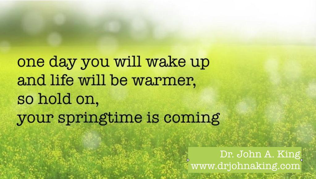 Springtime #drjohnaking #poetry